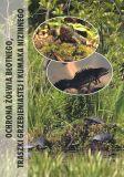Schutz der Sumpfschildkröte, des Kammmolchs und der Rotbauchunke